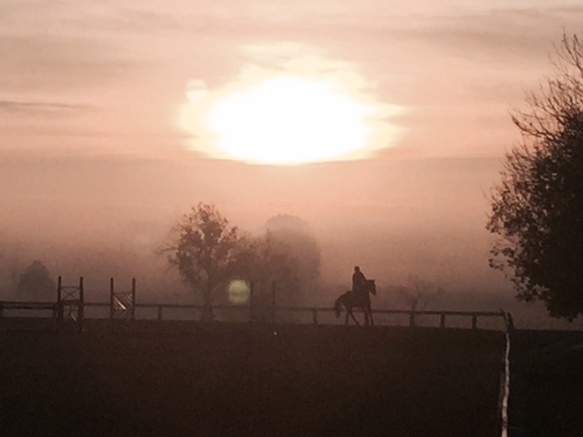 A Morning Ride at RRP